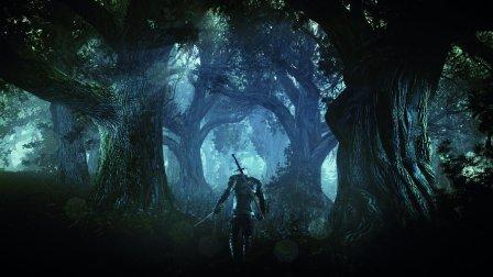 The Witcher 3 Wild Hunt картинки