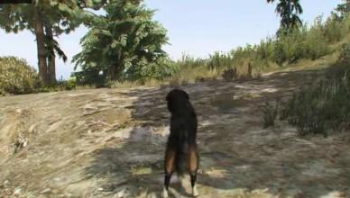 гта 5 собака